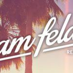 Sander Van Doorn & Firebeatz – Guitar Track (Sam Feldt Remix)